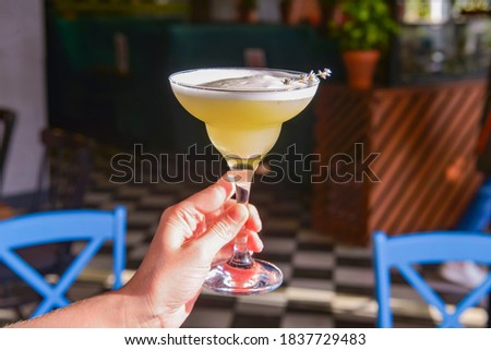 Summer cocktail in a Martini glass with fresh lavender flower. Lavander alcohol drink, refreshing beverage in restaurant. In hand over blurred background.