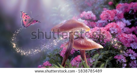 Fantasy Magical Mushrooms and Butterfly in enchanted Fairy Tale dreamy elf Forest with fabulous Fairytale blooming pink Rose Flower on mysterious Nature background and shiny glowing moon rays in night #1838785489