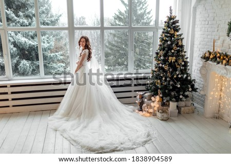 Luxury bride in wedding dress for Christmas near the large panoramic window. Luxury bride in wedding dress for Christmas. Charming bride in an elegant wedding dress. Bride in luxurious suites. #1838904589
