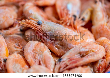 Frozen shrimps close-up. Dry freeze food with a minimum amount of water. Seafood delicacies. Selective focus Royalty-Free Stock Photo #1838971900
