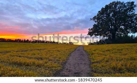 Sunset and clouds over an English field with a footpath and oak tree. Royalty-Free Stock Photo #1839470245