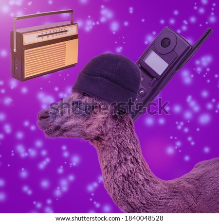 Collage of modern art. An image of an Alpaca with a phone and radio on an abstract background.