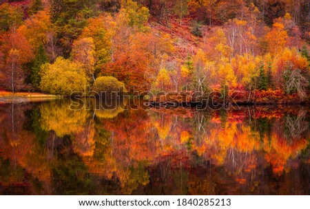 Autumn in Lake District.Colourful trees reflecting in calm water surface.Bright and vibrant landscape scene.Nature background.Autumn walk. Royalty-Free Stock Photo #1840285213