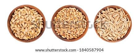Wheat, oat and barley grains in wooden bowl, isolated on white background. Processed organic dry seeds set. Top view. Royalty-Free Stock Photo #1840587904