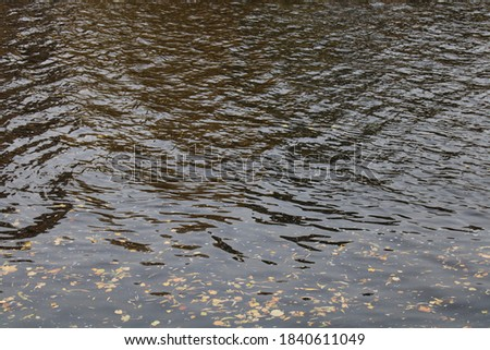 Rippling surface of river water background texture for graphic and web design purposes #1840611049
