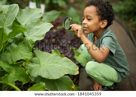 little african american kid boy look at plant using magnifier, want to know about nature everything, learn gardening and plants, flowers Royalty-Free Stock Photo #1841045359