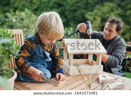 Small boy with senior grandfather in wheelchair constructing birdhouse, diy project. Royalty-Free Stock Photo #1841073481