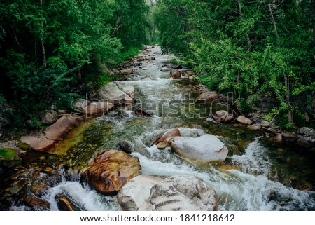 Scenic landscape with beautiful mountain creek with green water among lush thickets in forest. Idyllic green scenery with small river and rich greenery. Green water in mountain brook among wild flora. Royalty-Free Stock Photo #1841218642