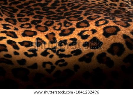 Abstract Leopard print with selective focus, black leopard spots texture design, dark leopard background. #1841232496
