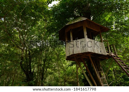 The watchtower or animal observation tower is made of wood used for observing and studying behavior. Take pictures of wild animals Camouflage from wildlife.