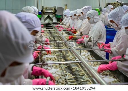 Process shrimp at factory in Vietnam Royalty-Free Stock Photo #1841935294
