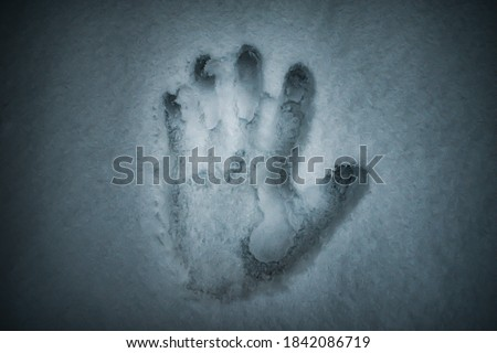 A creepy photo of a hand print in the soft smooth snow #1842086719
