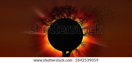 Silhouette of birds flying over lone tree with Solar eclipse #1842539059