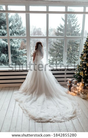 Luxury bride in wedding dress for Christmas near the large panoramic window. Luxury bride in wedding dress for Christmas. Charming bride in an elegant wedding dress. Bride in luxurious suites. #1842855280