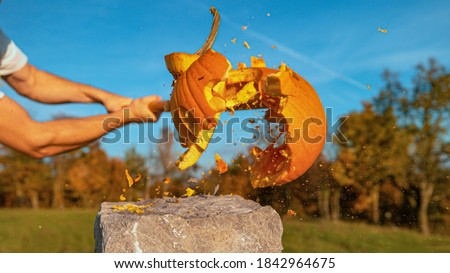 PORTRAIT CLOSE UP: Big carved pumpkin with a shocked face getting smashed with baseball bat on Halloween. Unrecognizable man hitting and destroying scared Jack O'Lantern with a wooden bat on Halloween Royalty-Free Stock Photo #1842964675