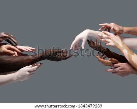 Creation of Adam. Hands of different people in touch isolated on grey studio background. Concept of relation, diversity, inclusion, community, togetherness. Weightless touching, creating one unit. Royalty-Free Stock Photo #1843479289