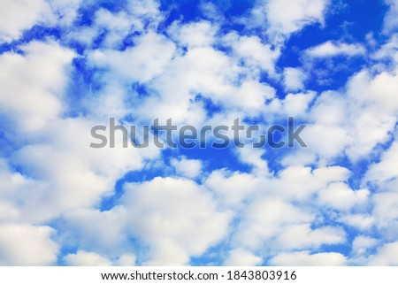 White cumulus clouds on blue sky background close up, fluffy cirrus cloud texture, beautiful cloudscape view, heaven on sunny summer day, cloudy weather, cloudiness backdrop, azure skies, ozone layer Royalty-Free Stock Photo #1843803916