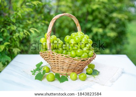 Green grape in Bamboo basket on white marble table in garden, Shine Muscat Grape with leaves in blur background. Royalty-Free Stock Photo #1843823584