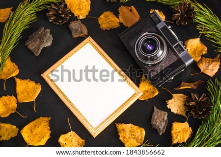 Empty photo frame and retro photo camera against black background with autumn leaves, pine branches and pine cones . Copy space. Top view. Memories of past concept