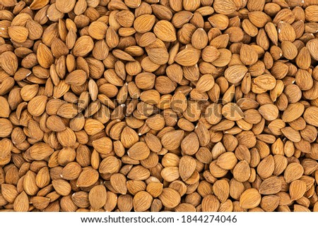Detailed Apricot Kernel shot for use background or as texture Royalty-Free Stock Photo #1844274046