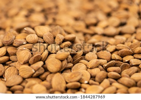 Detailed Apricot Kernel shot for use background or as texture Royalty-Free Stock Photo #1844287969