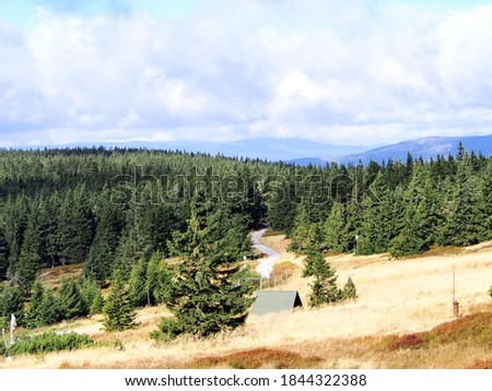 meadow on a ridge with dry grass and the roof of a small house with forest and blue sky in the background on an autumn sunny day, Jeseníky Mountains, Czech Republic,  unspoiled nature of rugged mounta #1844322388