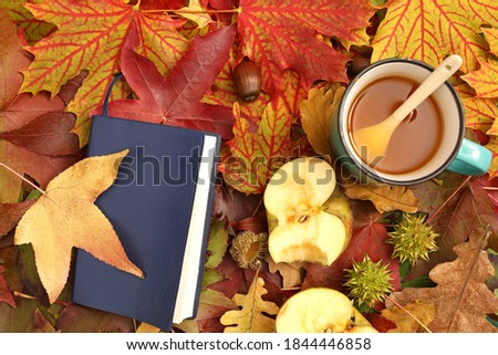 Autumn leaves amazing color with cup of tea, one book and apple are arranged as a background