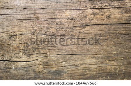 old rustic wood with mold or fungal on top background texture  Royalty-Free Stock Photo #184469666