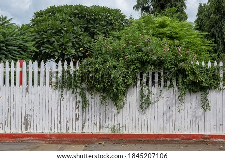 The white picket fence is painted on the bottom edge with red. Royalty-Free Stock Photo #1845207106