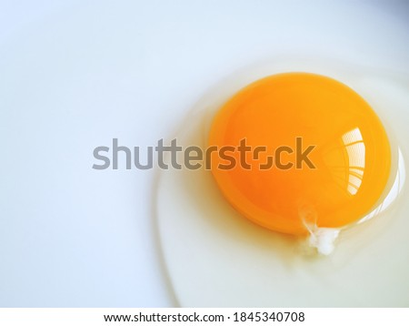 Raw egg yolk on white background with copy space. Royalty-Free Stock Photo #1845340708