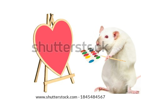funny cute rat paints a picture, heart on a white background