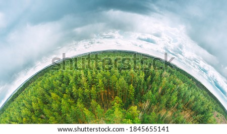 Aerial View Green Coniferous Forest Pines Woods Landscape In Spring Day. Top View Of Beautiful European Nature From High Attitude. Drone View. Bird's Eye View. Little Small Planet Concept. Royalty-Free Stock Photo #1845655141