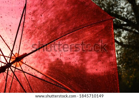 Rain on a red umbrella.Drops on a transparent awning.Open dome on a dark blurry background of nature.The concept of protecting transparency and preservation. #1845710149
