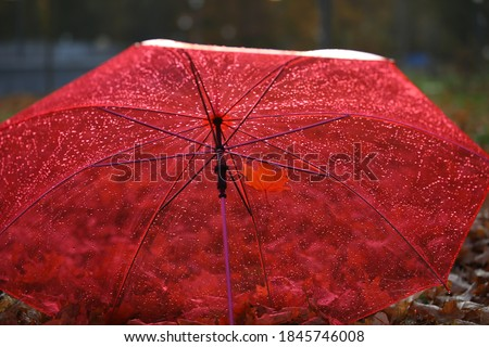 Rain on a red umbrella.Drops on a transparent awning.Open dome on a dark blurry background of nature.Selective focus.The concept of protecting transparency and preservation. #1845746008