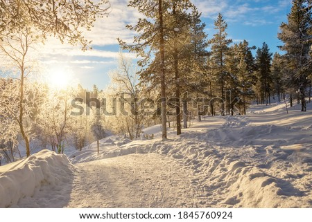 Snowy forest landscape at sunset, frozen trees in winter in Saariselka, Lapland, Finland Royalty-Free Stock Photo #1845760924
