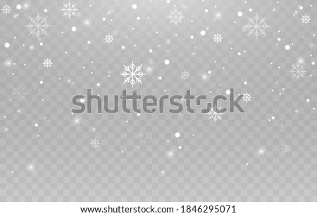 Vector snowflakes. Snowfall, snow. Snowflakes on an isolated background. PNG snow. Snow storm, Christmas snow. Vector image. #1846295071