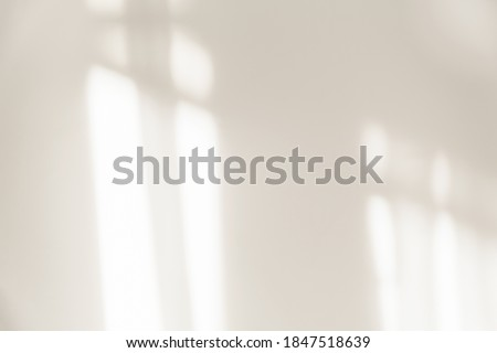 The light from the window shines on the white wall, the shadow from the curtain, blurry shadows and silhouettes on the wall. Royalty-Free Stock Photo #1847518639