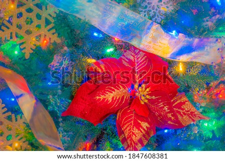 Colored lights fill a Christmas tree with Poinsettias and snowflakes between ribbon garlands.