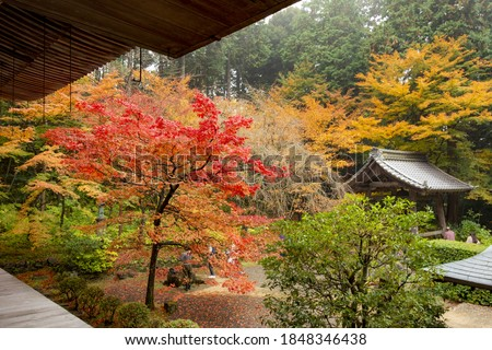 Autumn colors at the Japanese garden of Kongourin-ji temple in Shiga prefecture, Japan