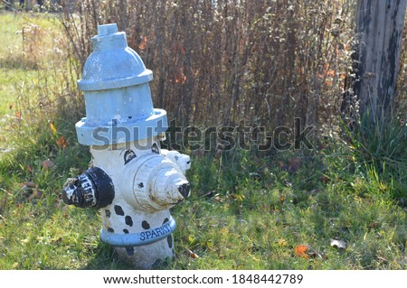 Blue and white fire hydrant with black spots