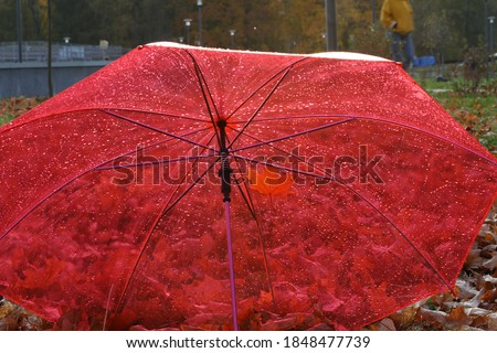 The umbrella color is red for a rainy day.Transparent roof with raindrops.Open dome with autumn leaves background.Concept of the autumn season.Selective focus #1848477739