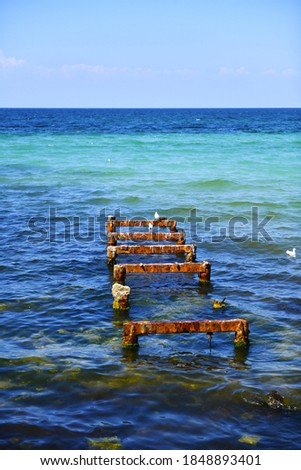 The rust-eaten piles of the old pier protrude from the seabed. Metal base of the former fishing pier, resting place for seagulls. Mediterranean coast. Selective focus. #1848893401