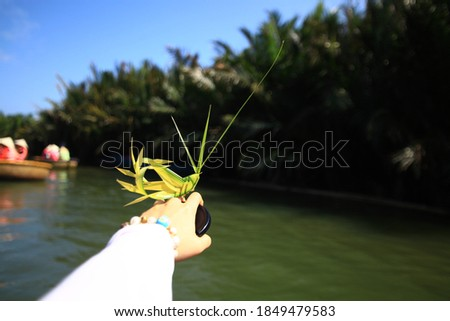 Grasshopper-shaped leaves craft with long antennae. It was made into a ring shape so that it could be worn on the hand. The riverside, trees and sky are in the background.