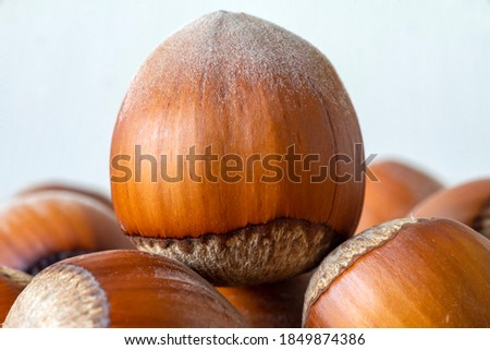 Hazelnuts covered in shell brown, close-up of wholesome raw food products on the kitchen area #1849874386