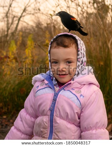 Cute 2 year old outside in the fall. Red winged blackbird is standing on the little girl's head, eating seeds. The child has winter jacket and spotted hoodie. Golden hour, warm picture.
