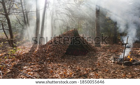 Survival Shelter Debris hut in the wilderness. Bushcraft camp setup in the forest. Royalty-Free Stock Photo #1850055646