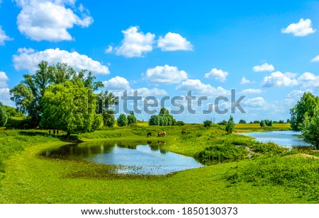 Summer green rural pond in sunny day. Great outdoors scene. Summer great outdoors landscape. Great outdoors landscape #1850130373