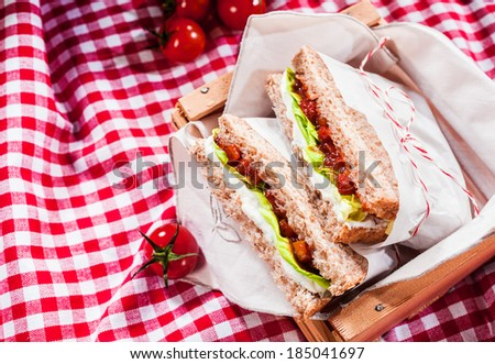 Delicious savory salad sandwiches served on a red and white checked tablecloth for a healthy outdoors summer picnic, with copyspace