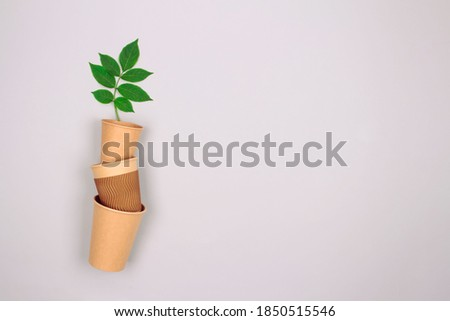 Set of different eco-friendly coffee to go cups - kraft paper cup with green leaves above on light grey background with copyspace. Recycled kraft paper packaging and zero waste concept, mockup image