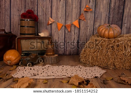 Beautiful autumn decor in a photo studio in retro autumn style with pumpkins and wooden details